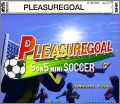 PleasureGoal - 5 on 5 Mini Soccer (Futsal)